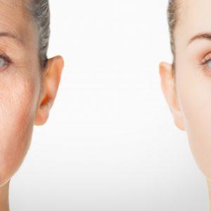 肌の老化を防止する方法